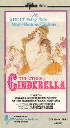 Coverscan of The Other Cinderella